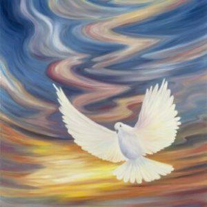 יונת השלום בשמי הקסם 90-140 A Dove of Peace in Enchanted Skies
